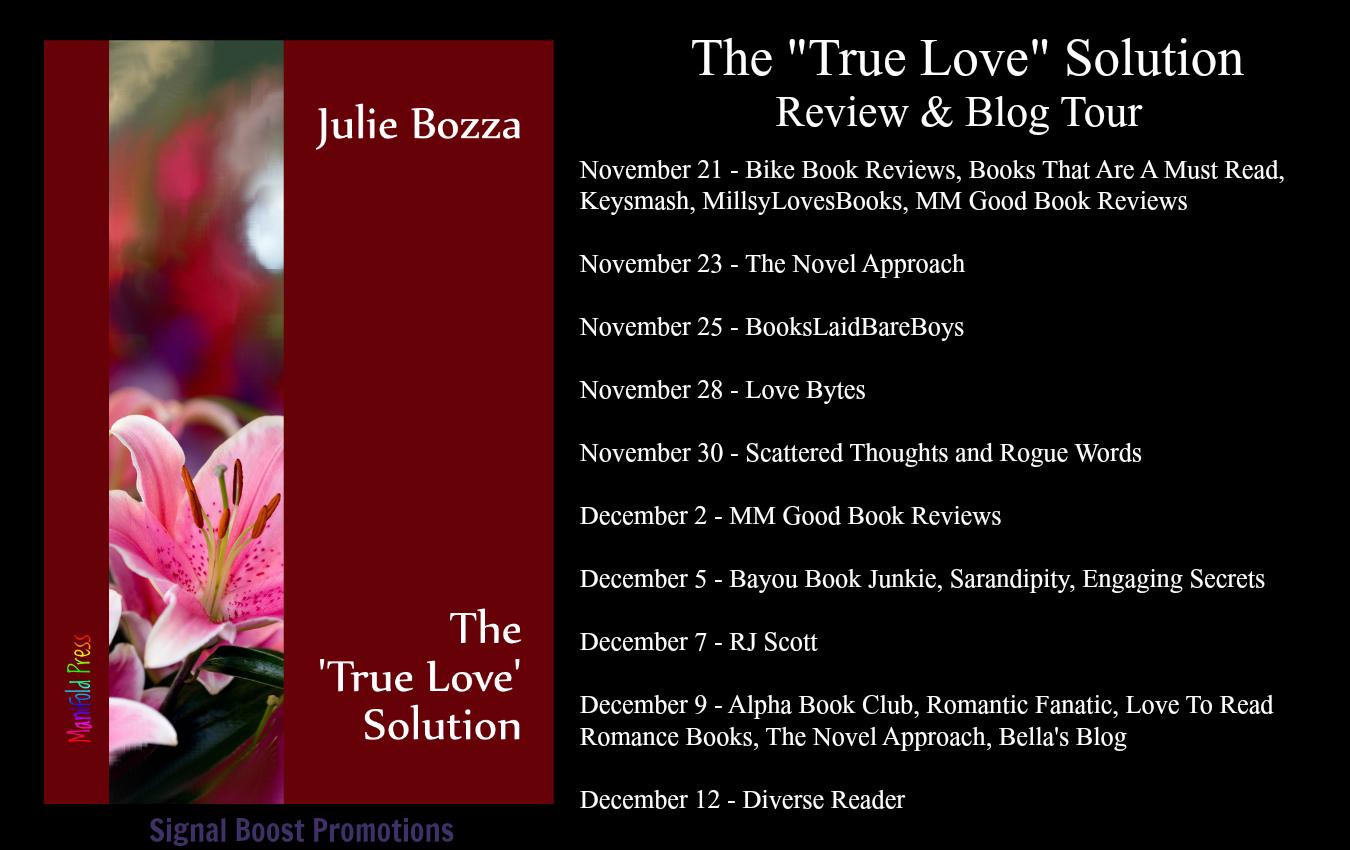 blog tour guestpost giveaway julie bozza the true love solution love bytes. Black Bedroom Furniture Sets. Home Design Ideas