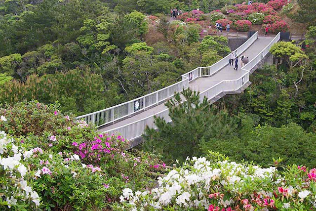Azalea Bridge During Flower Matsuri