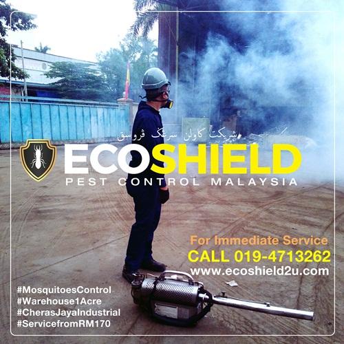 Eco Shield Pest Control Pest Control Selangor