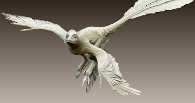 Feathered dinosaurs learned to fly before birds planet-today.com