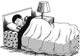 Beberapa Hal Tentang Tidur Yang Mungkin Belum Kita Tahu