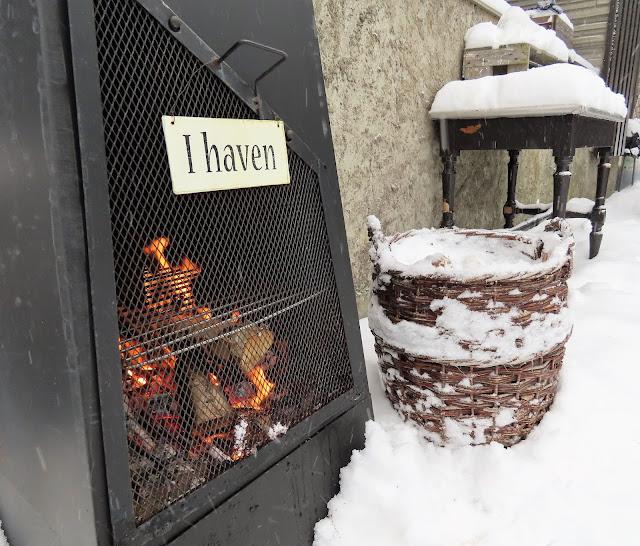 Vinterpoesi i hagen - Nærbilde av fyr på peisen IMG_0363 (2)-min