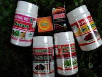 Obat Kutil Kelamin | Kondiloma Akuminata | Jengger Ayam | HPV - Herbal Aman Dan Ampuh Dari De Nature
