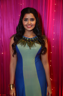 Anupama Parameswaran in lovely shaded gown ~  Exclusive 27.JPG