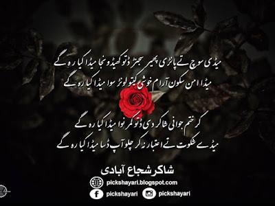 Shakir Shuja Abadi Poetry