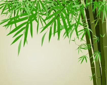 Manfaat Daun Bambu untuk Kesehatan Tubuh Manfaat Daun Bambu untuk Kesehatan Tubuh