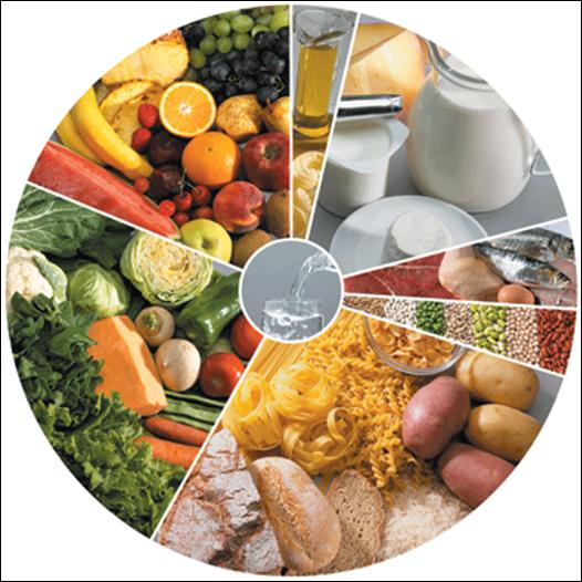 Diabetes e Nutrição no Idoso - SPGG