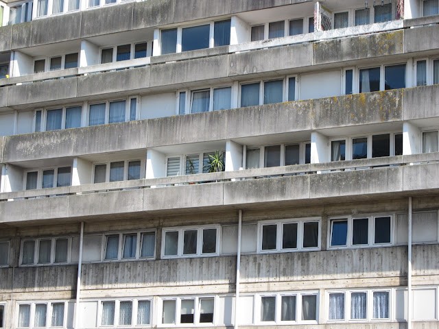 Concrete block of flats in Southampton with Cordyline on one balcony.