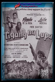 Tigang na lupa (1950)