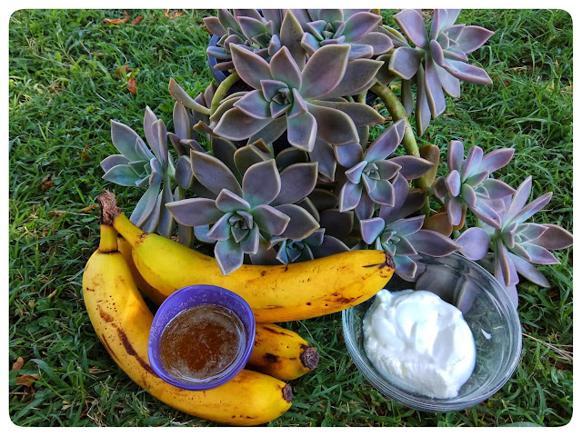 diy hair mask banan yogurt honey alleycraft