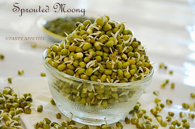 how to make sprouts in sprout maker step by step