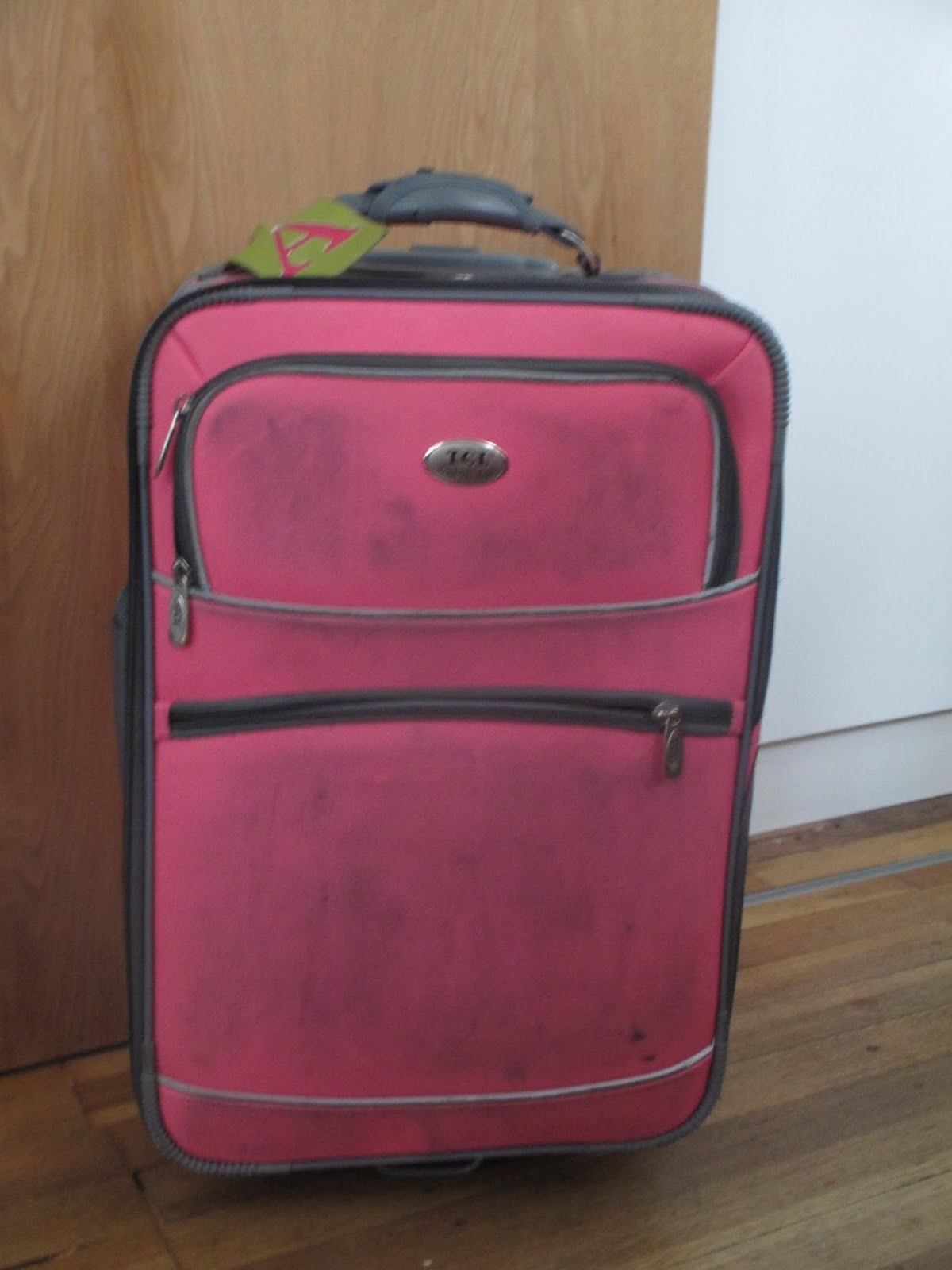 Painted luggage suitcase DIY Craft