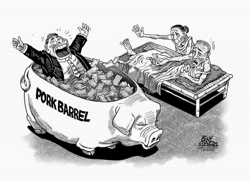 Pork Barrel: Pros vs. Cons