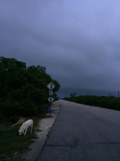 Blimp Road, Cudjoe Key
