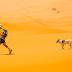 ΤΡΕΧΟΝΤΑΣ ΣΕ ΜΑΡΑΘΩΝΙΟ! Ο πρώτος σκύλος που τερμάτισε σε Μαραθώνιο...