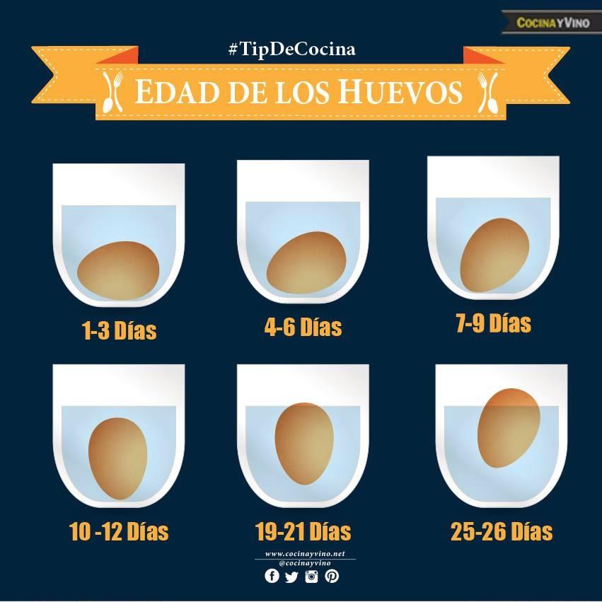 Truco para determinar la edad de un huevo