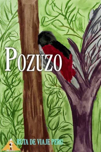 POZUZO