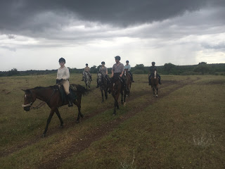Riitta reissaa, Horsexplore, Botswana, Tuli-maa, ratsastussafari, ratsastusmatkailu