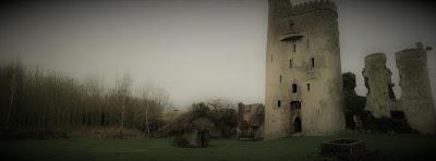 Ballyadams Castle