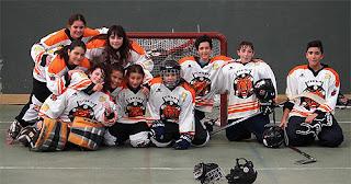 Hockey Tigres Roleando Aranjuez