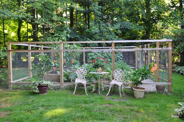 Gardeners with kids the vegetable garden fence for Vegetable garden fence design
