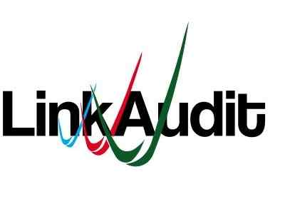 Link profile audit