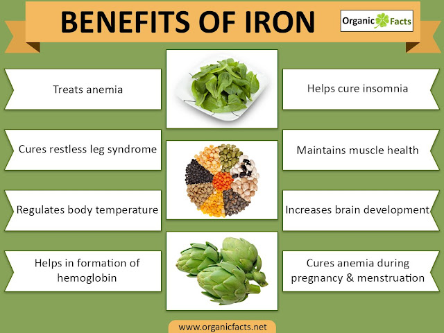 Benefit Of Iron in human body