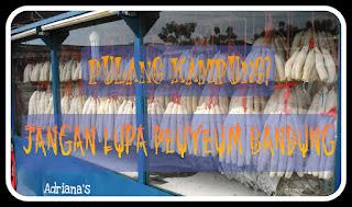 http://adriannisa.blogspot.com/2015/10/peuyeum-bandung.html