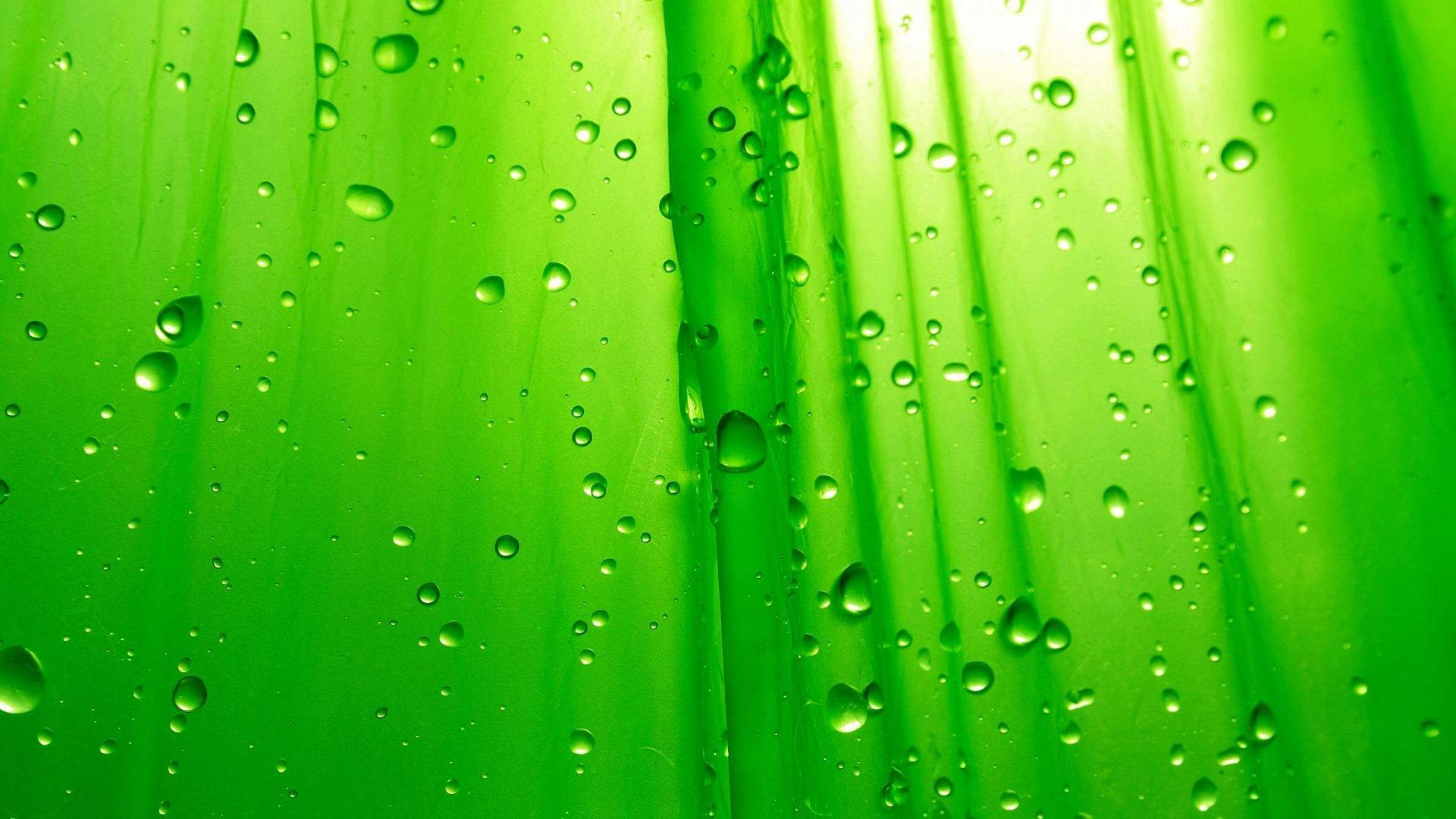 HD Green Backgrounds Wallpapers