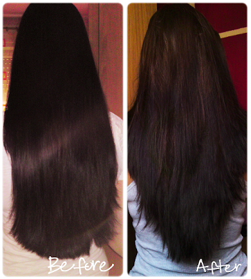 U shaped haircut with layers back view