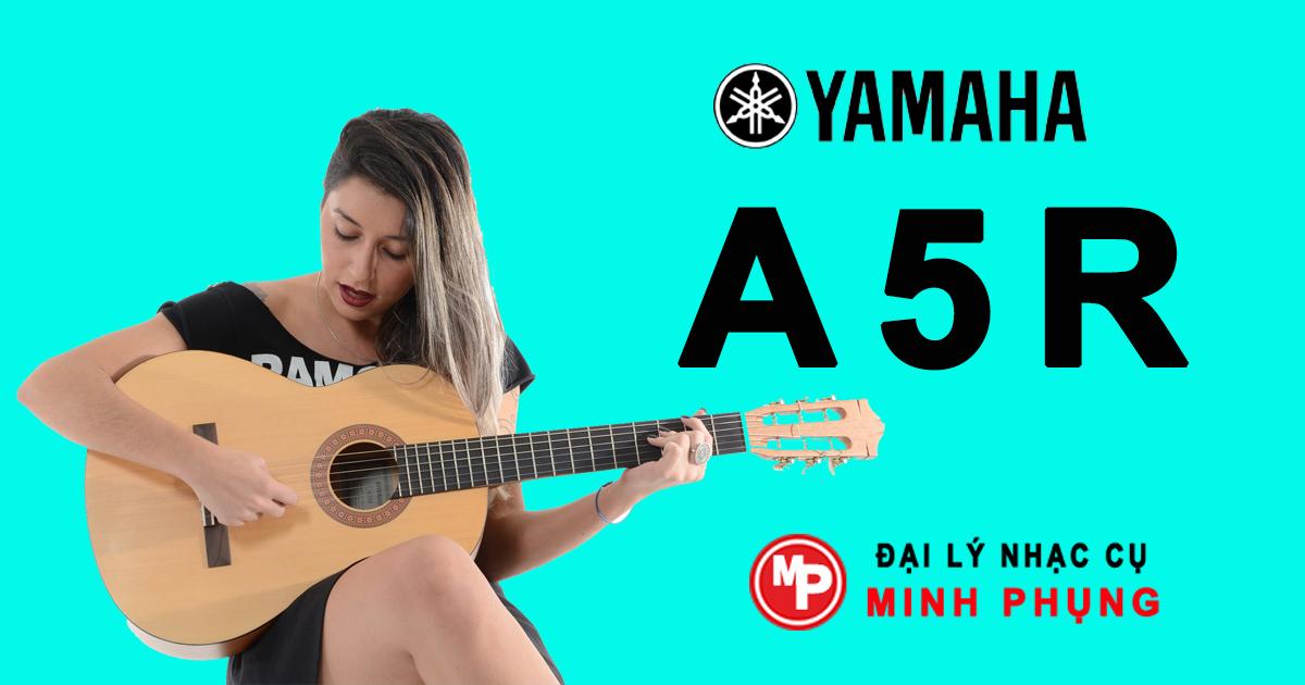 Nơi bán Guitar Yamaha A giá rẻ, uy tín, chất lượng nhất