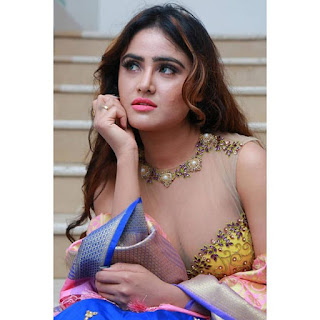 Sony Charishta latest in transparent lace blouse Navel Queens