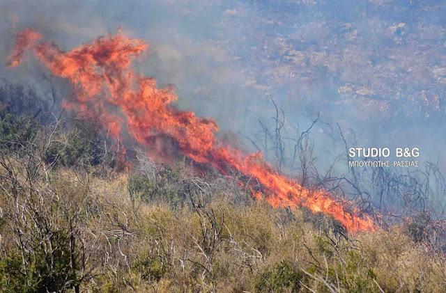 Με δυο πυρκαγιές ξεκίνησε η καλοκαιρινή περίοδος για την Αργολίδα