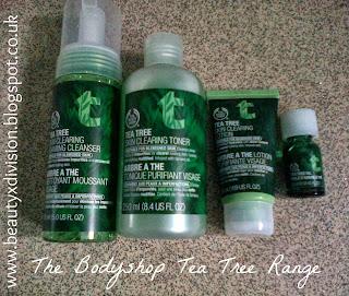 The Bodyshop Tea Tree Range