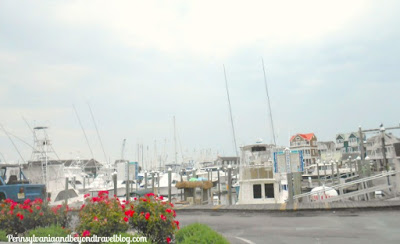 Cape May Harbor and Marina in New Jersey