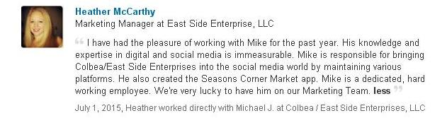 mike schiemer consulting review
