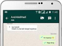 Download BBM MOD WhatsApp v3.0.1.25 Apk ( WA ) Terbaru By Richie Evan II