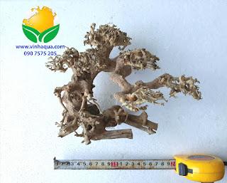 Lũa bonsai thủy sinh số 01