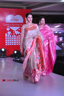 South Indian Celebrities Pos at Love For Handloom Collection Fashion Show  0023.jpg