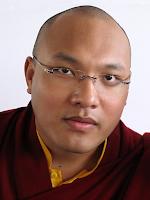 Karmapa's travel curbs to go