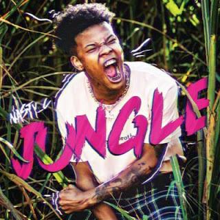 Nasty C - Jungle (2018) [DOWNLOAD]