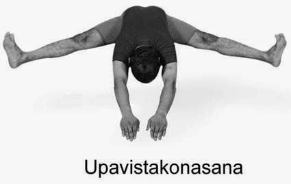 legacy of wisdom the joy of yoga  yoga sequences in