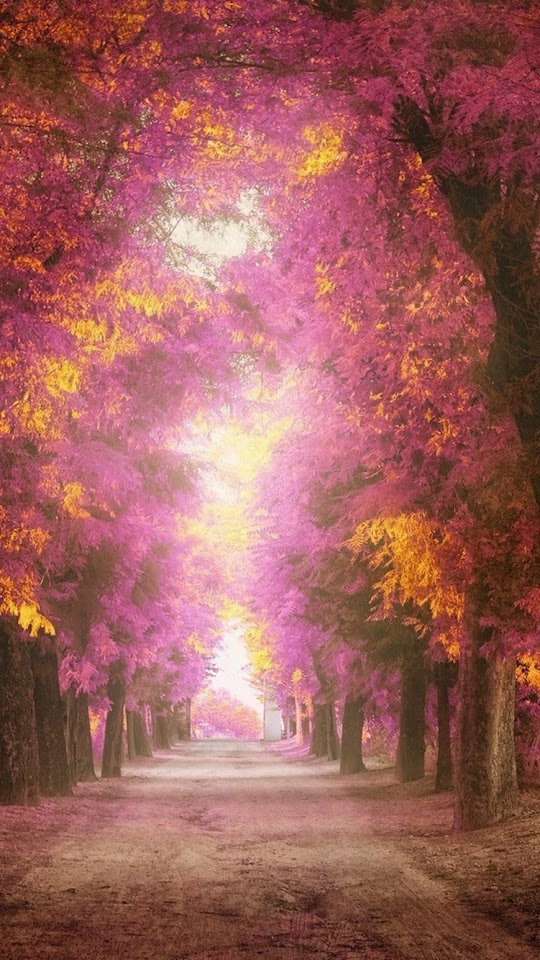 Pink Park Alley  Galaxy Note HD Wallpaper