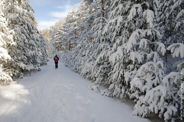 Senderismo planes Madrid rutas montaña sencillas nieve raquetas naturaleza fotografia