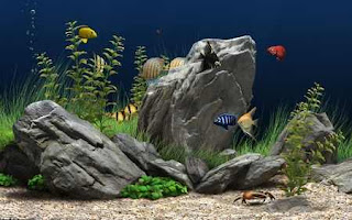 Dream Aquarium: Screensaver Aquarium Virtual