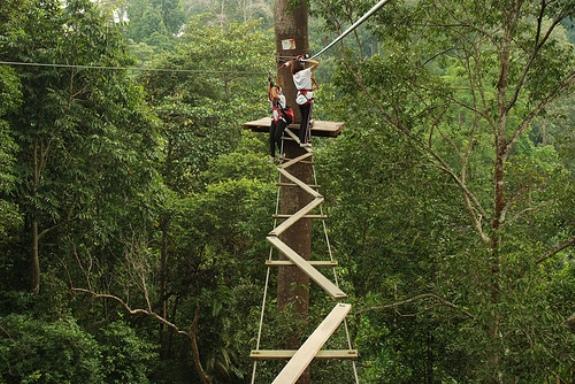 Tempat menarik di selangor Skytrex Adventure Shah Alam