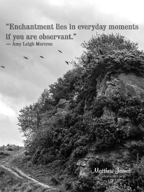 """Enchantment lies in everyday moments if you are observant."" ― Amy Leigh Mercree"