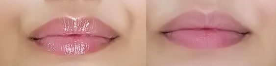 fernberry mochi lips