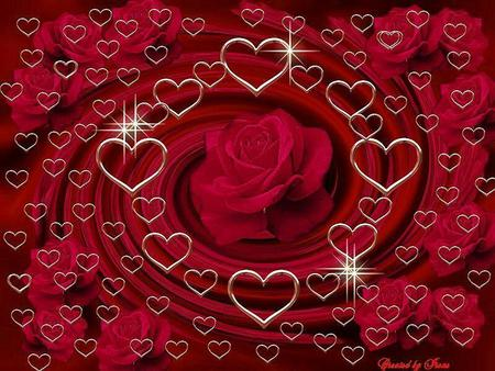 Funny Pictures Gallery  Love roses and hearts  love rose    heart     love rose    heart    pictures  rose
