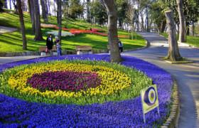 bunga-tulip-umroh-istanbul-turki